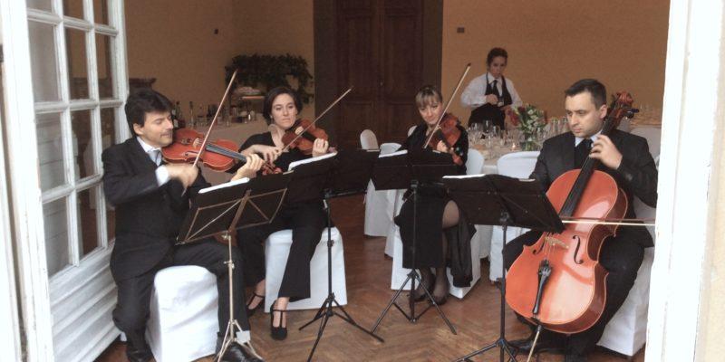 Strings Quartet