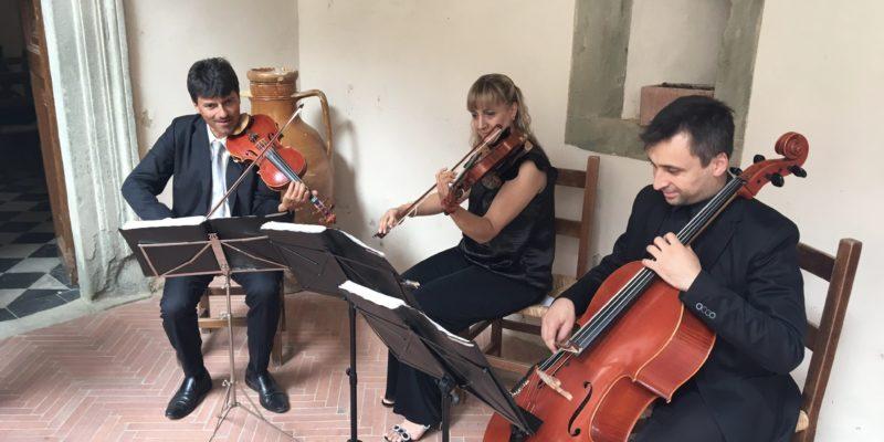 Strings Trio